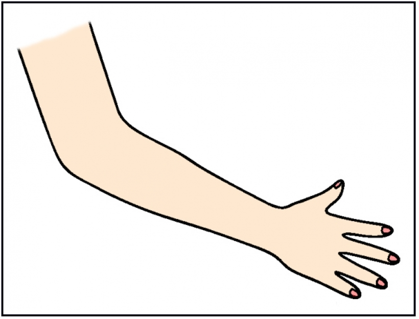 clipart arms