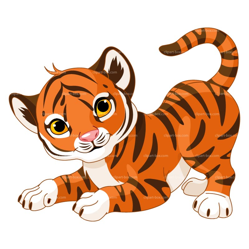 Clipart Baby Tiger Royalty Free Vector Design