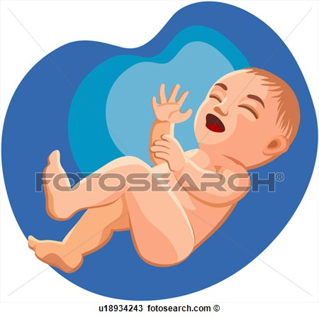 Clipart Character Week 0 4 Suckling Newb-Clipart Character Week 0 4 Suckling Newborn Baby Fotosearch-2