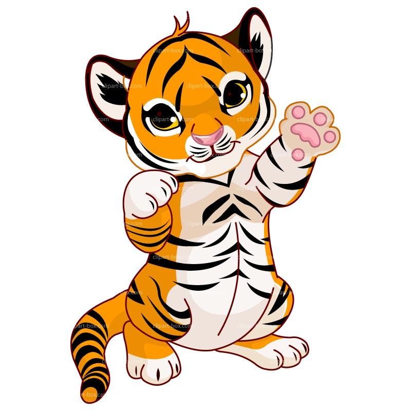 CLIPART CUTE BABY TIGER | Royalty free vector design