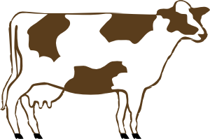 Clipart dairy cows