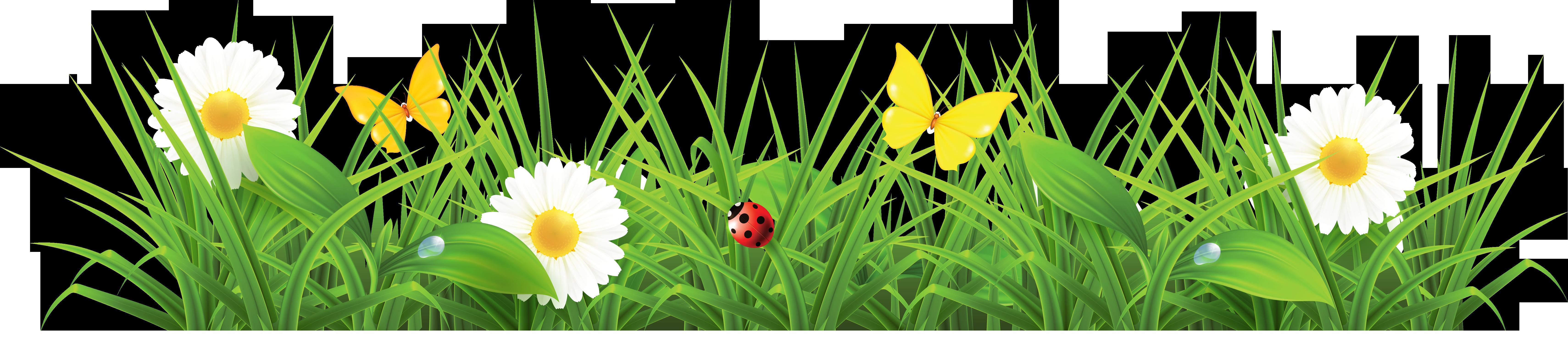 Clipart Grass-clipart grass-0