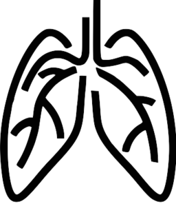 clipart human lungs-clipart human lungs-12