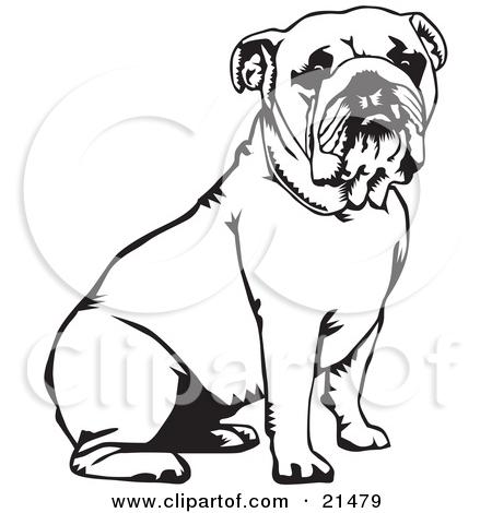 English Bulldog Clipart Look At Clip Art Images Clipartlook