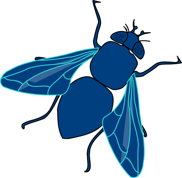 Clipart images of a fly - ClipartFest