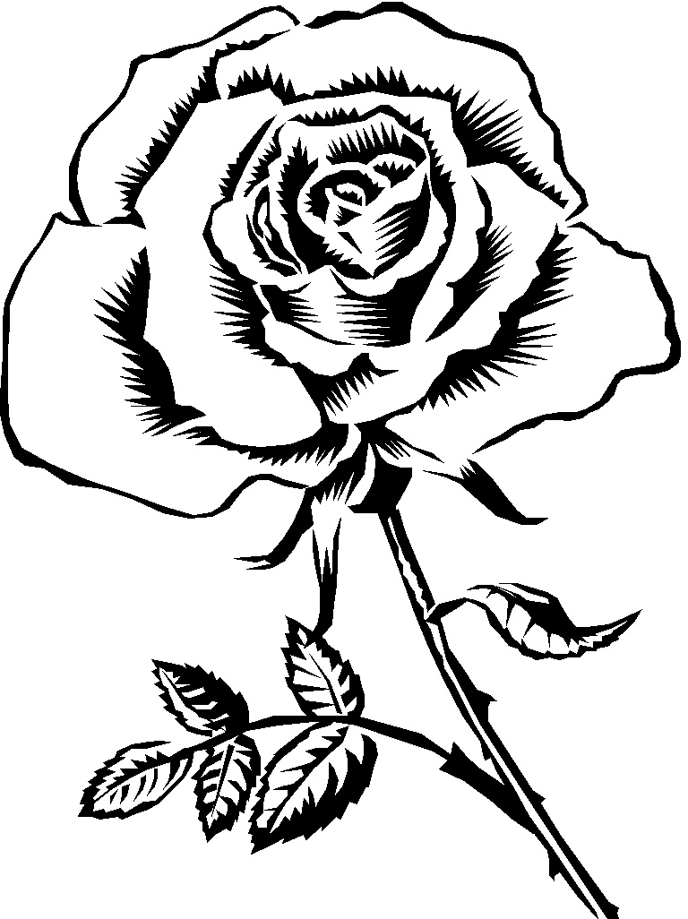 Clipart Info - Rose Clipart Black And White