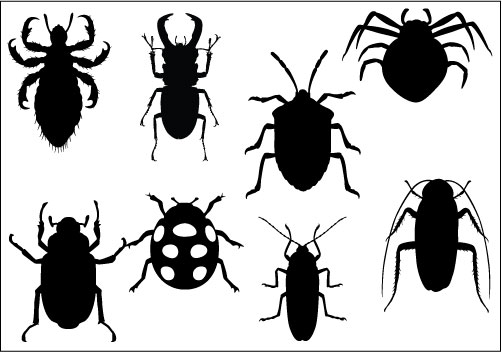 clipart insects-clipart insects-11