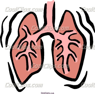 clipart lungs