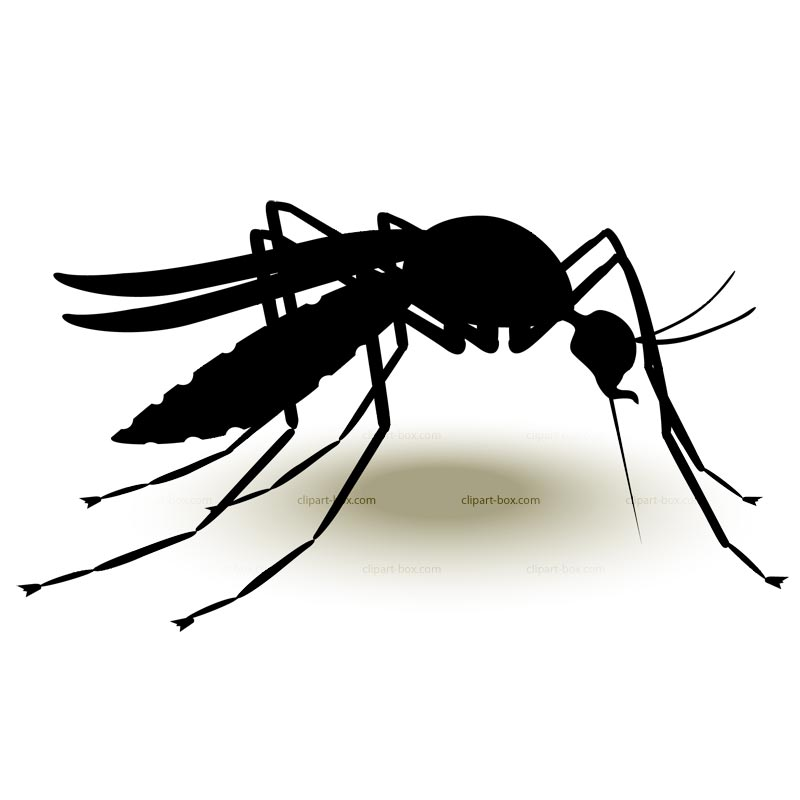 Clipart Mosquito Royalty Free Vector Design