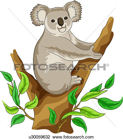 Clipart - native bear, vertebrate, koala, land animal, mammal, wild animal