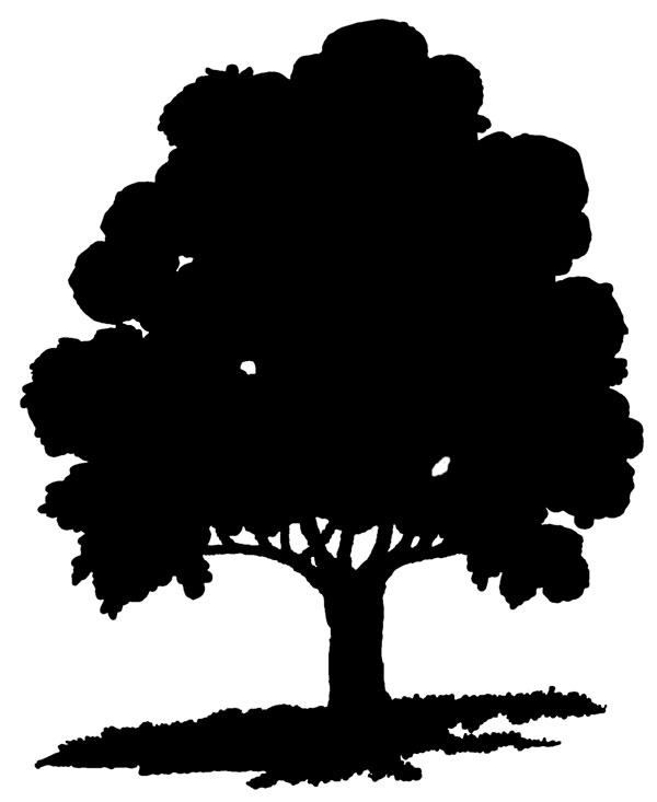 Clipart Oak Trees Black And White Clipar-Clipart Oak Trees Black And White Clipart Panda Free Clipart-4