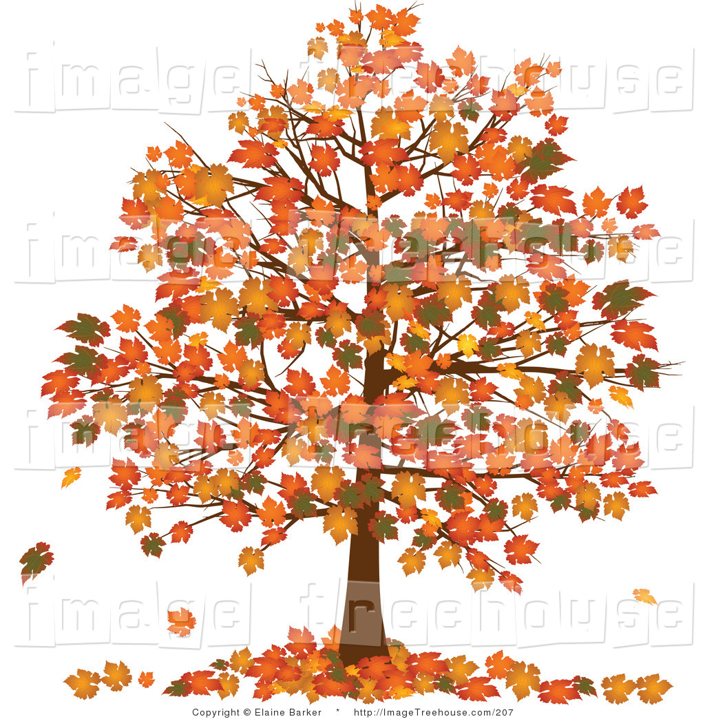 Clipart Of A Fall Tree With Vibrantly Colored Orange And Yellow Fall