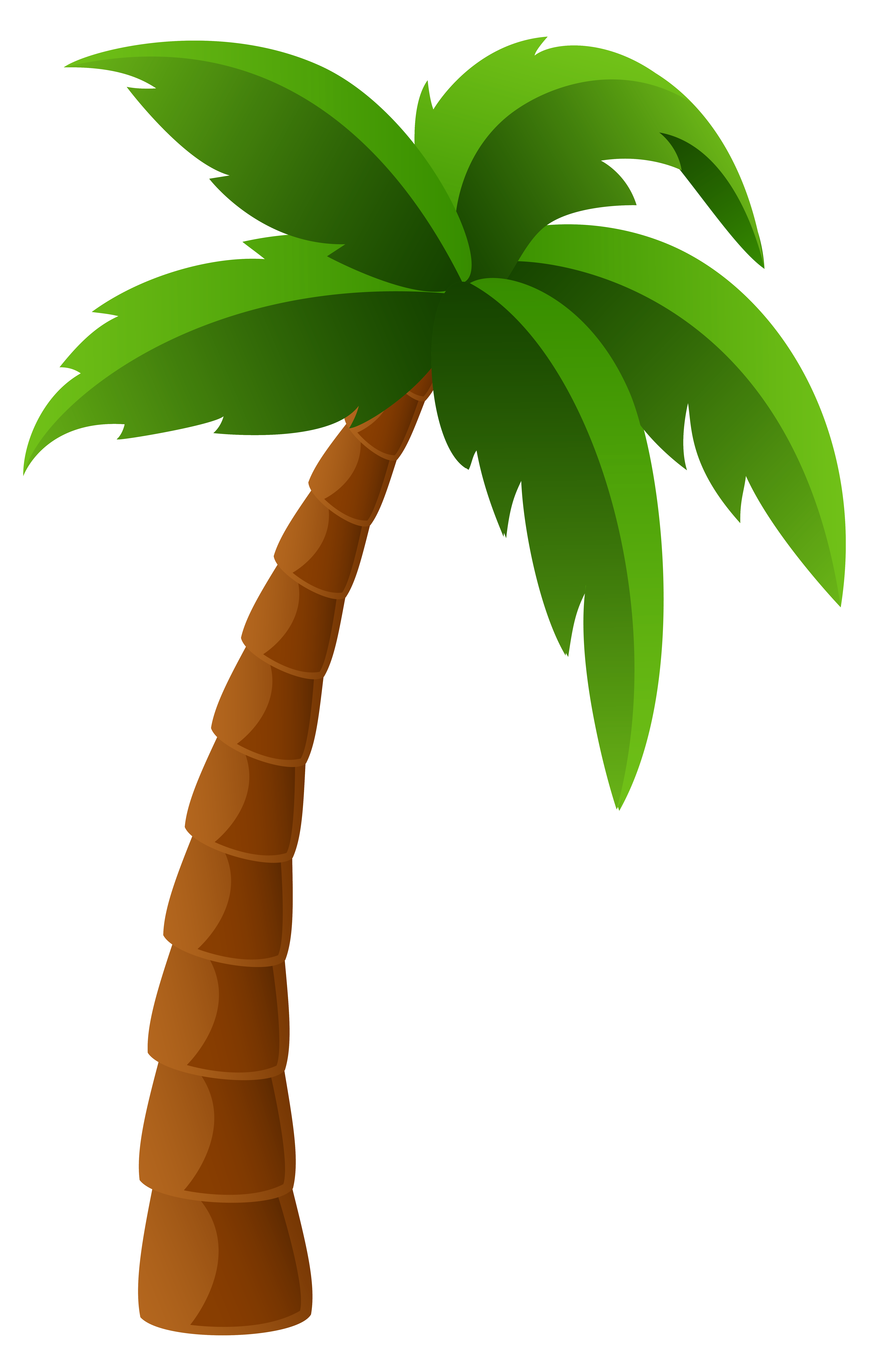 Clipart of a palm tree - ClipartFest