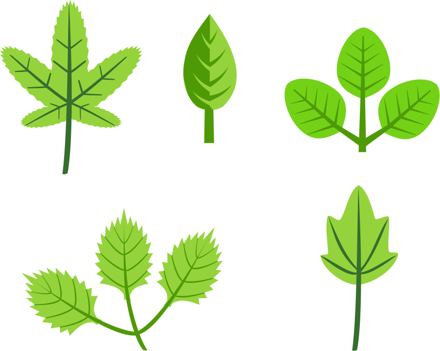 Clipart Of Leaves-clipart of leaves-4