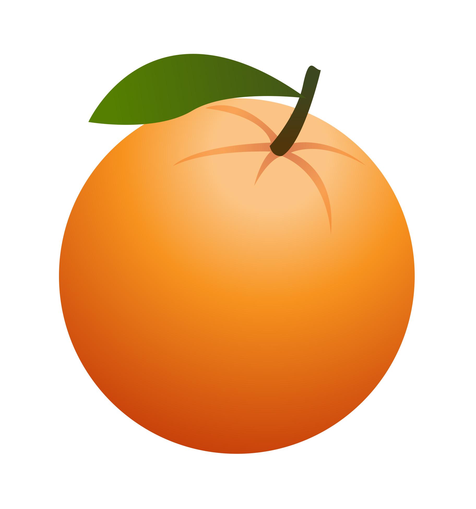 ... Clipart orange ...