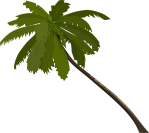 ... Clipart palm tree free - ClipartFox ...