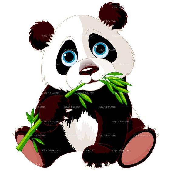 CLIPART PANDA EATING BAMBOO .