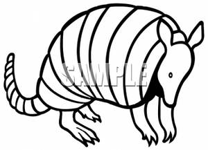 Clipart Picture of an Armadillo. Armadillo