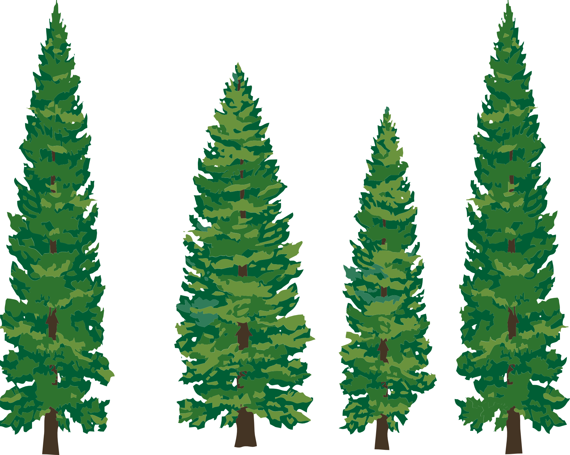 Clipart Pine Tree Clipart Panda Free Cli-Clipart Pine Tree Clipart Panda Free Clipart Images-1
