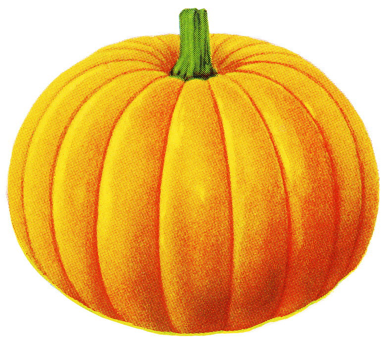 Clipart Pumpkin So I M Also Including This Pumpkin Image Separate