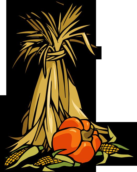 Clipartbest Com - Corn Stalk Clip Art