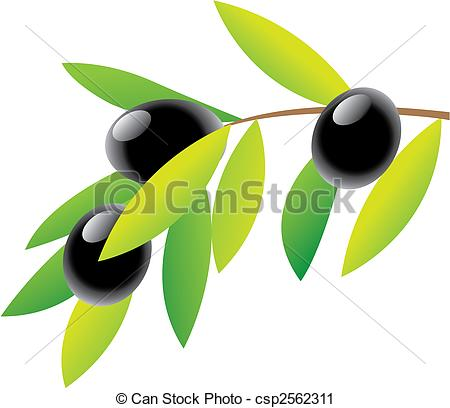 ... Clipartby Tribalium22/1,599; Olives - Olive Branch and green leaves isolated on white,.