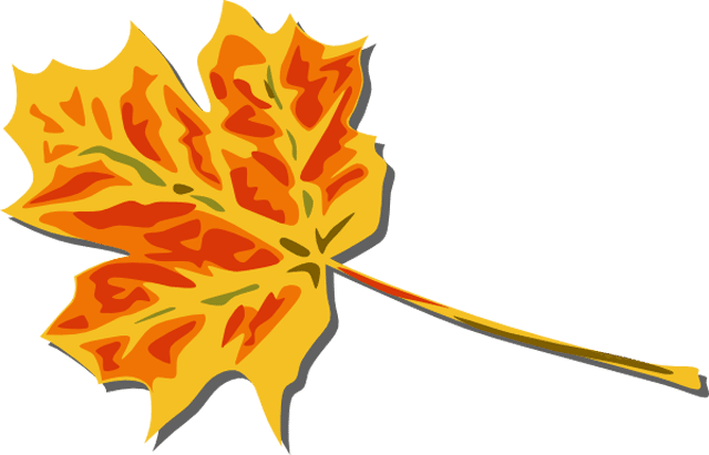 Clkeru0026#39;s Free Fall Leaves Clip Art. A yellow and red fall leaf.
