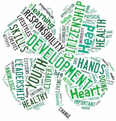 Clover Word Cloud - 4 H Clipart