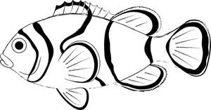 Clownfish Clip Art-Clownfish Clip Art-6