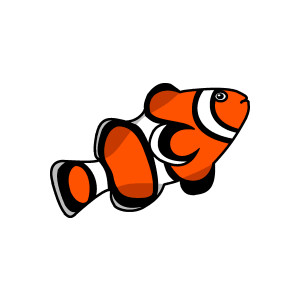 Clownfish clown fish live clipart clipartfox