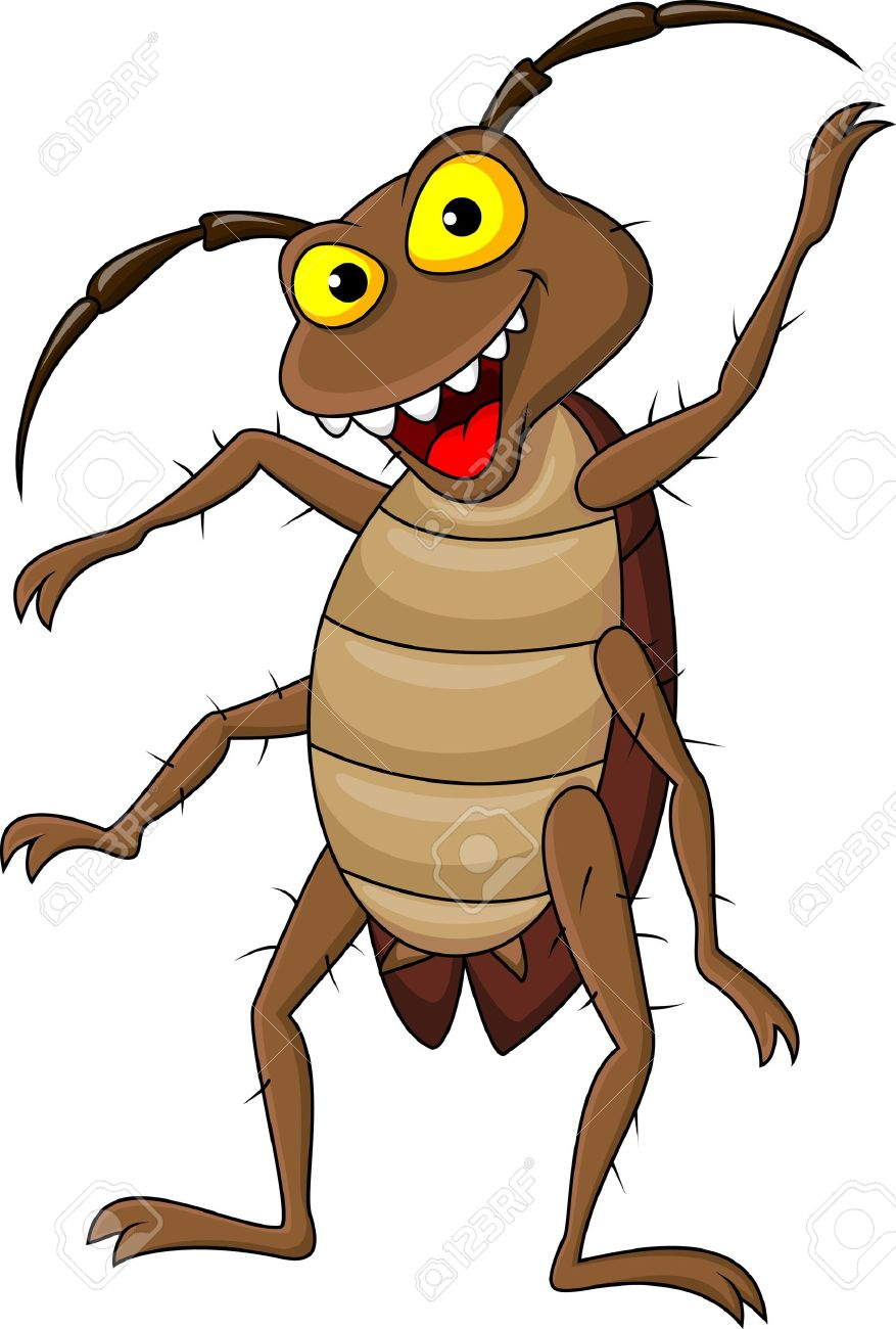 cockroach , cockroach cartoon