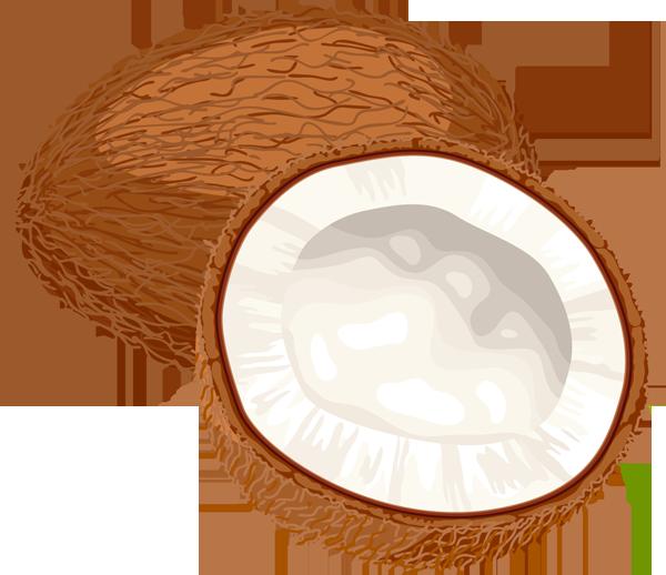 coconut clipart-coconut clipart-1