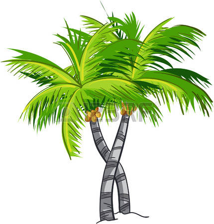 Coconut Tree: Cartoon Coconut Tree-coconut tree: Cartoon coconut tree-4
