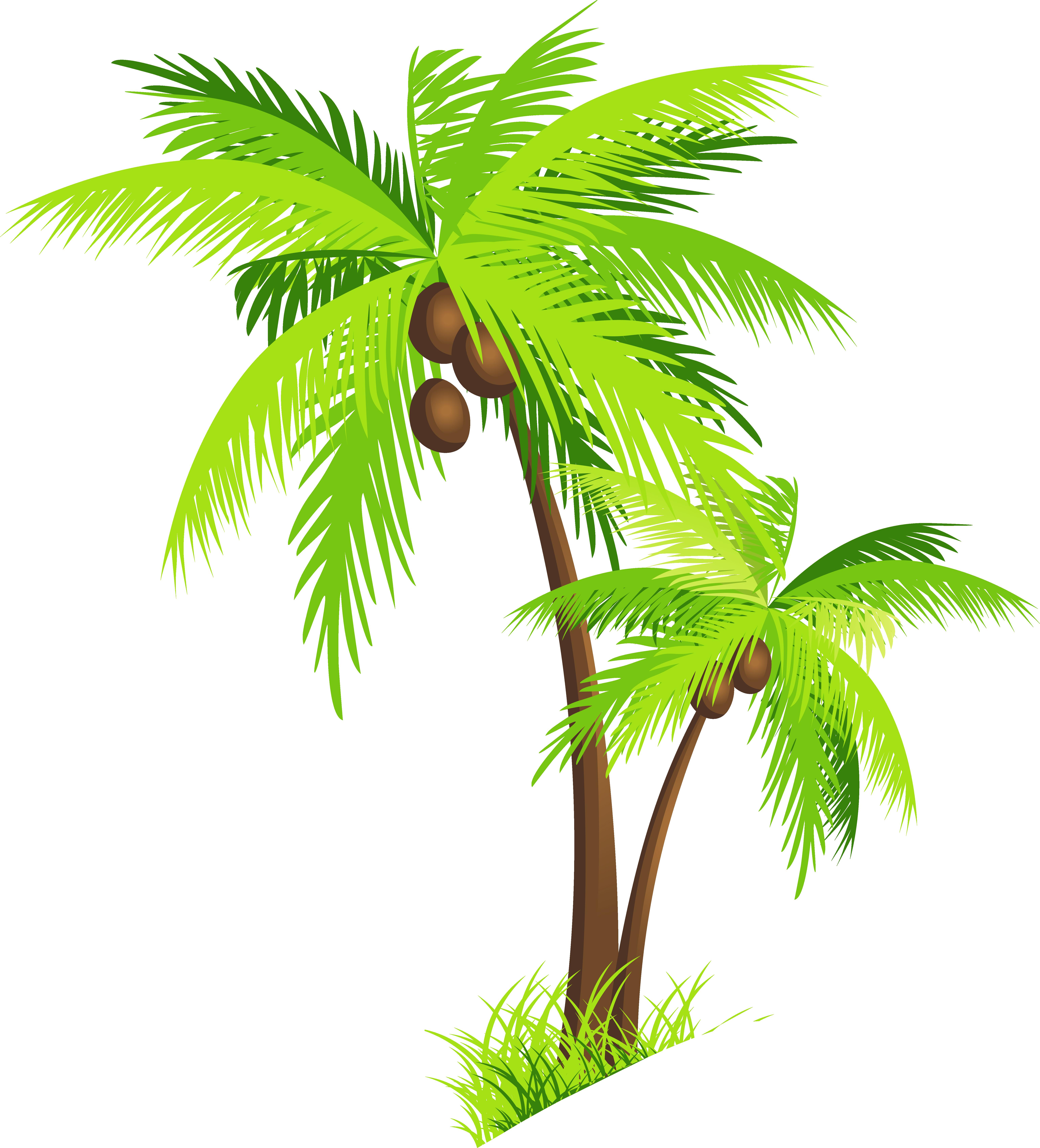 Coconut tree clipart png - . - Coconut Tree Clipart