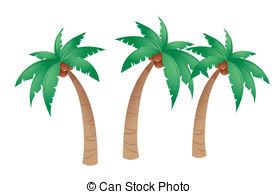 ... Coconut Tree Isolated In White Backg-... Coconut tree isolated in white background-9