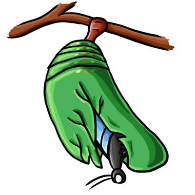 Cocoon Clipart-cocoon clipart-5