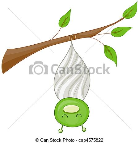 Cocoon - A Cocoon With The Insect Inside-Cocoon - A Cocoon With the Insect Inside it Partially.-7