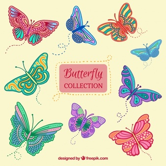 Collection Of Hand-drawn Butterflies-Collection of hand-drawn butterflies-6