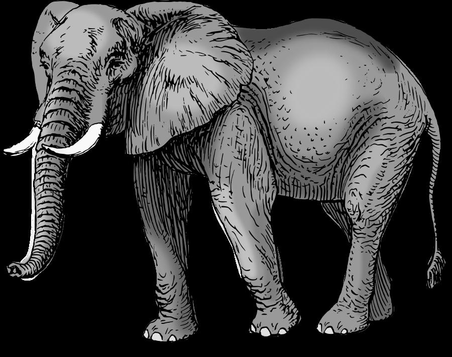Colored Elephant Clipart-Colored Elephant Clipart-3