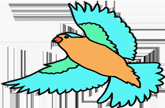 Colorful Bird In Flight .