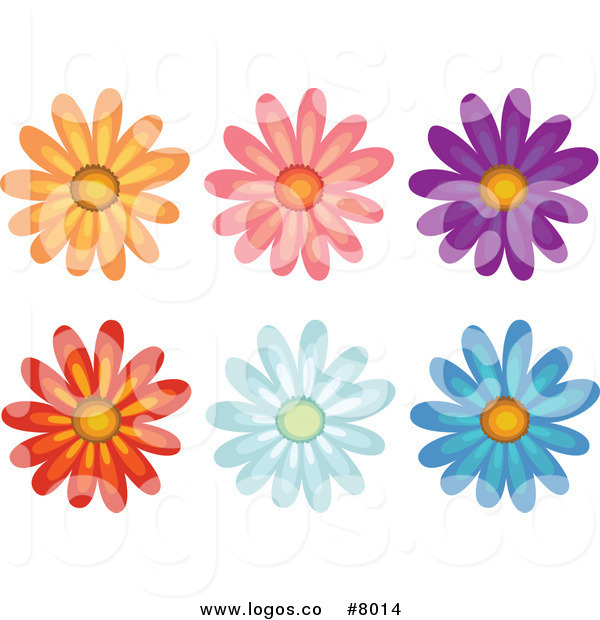 Colorful Daisy Flower Clip Art