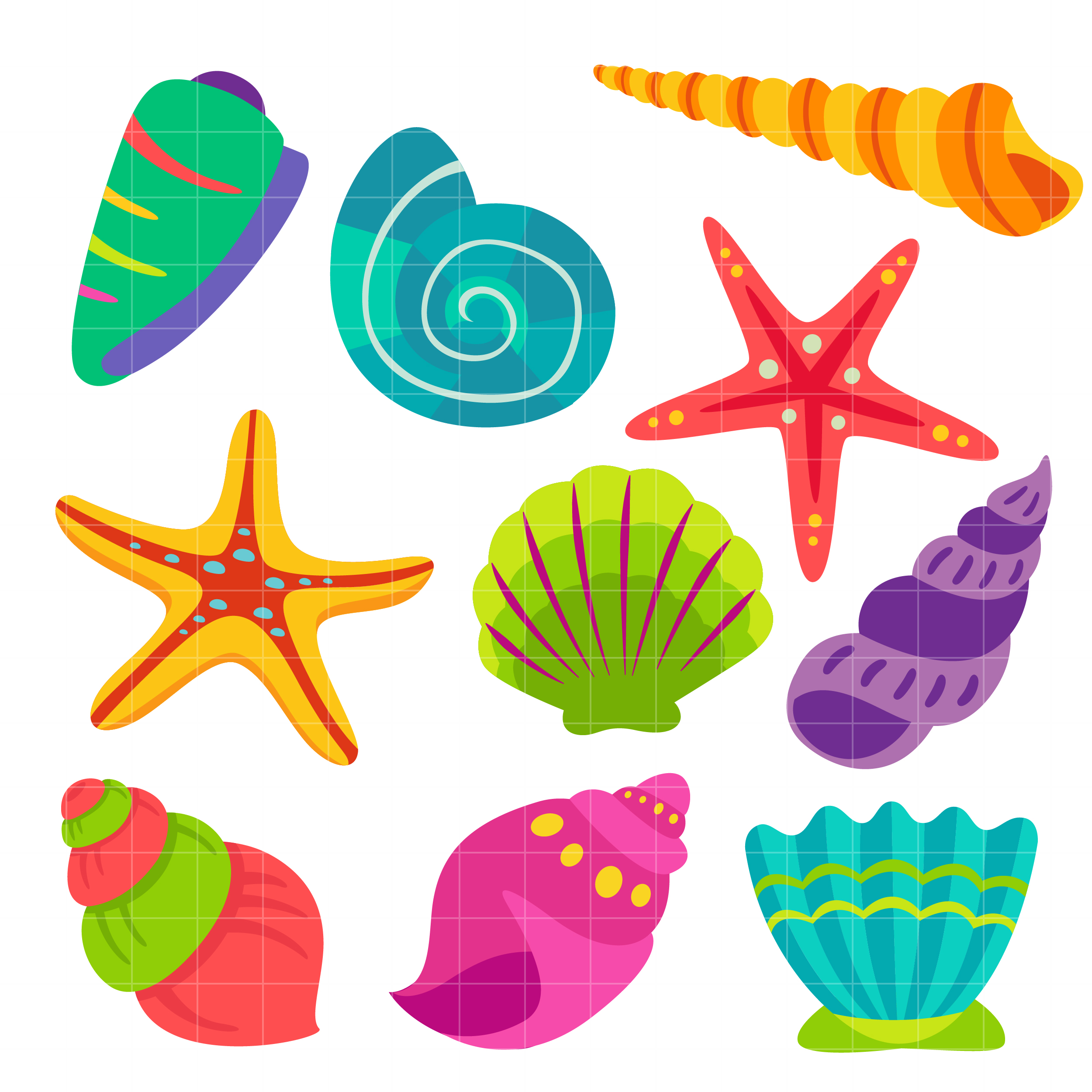 Colorful Sea Shells Clipart