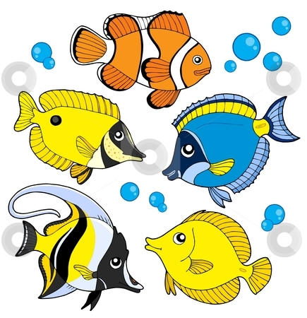 coral reef fish clipart