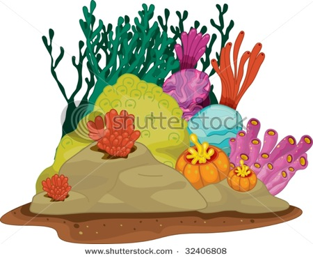 Coral reef animals and .