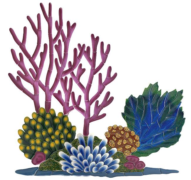 Coral Reef Clip Art Clipart .