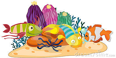 Coral Reef Clip Clipart .