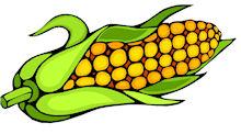 Corn Clipart Clipart Cliparts For You 3-Corn clipart clipart cliparts for you 3-9