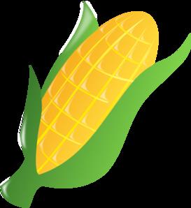 Ear Of Corn Clipart #1