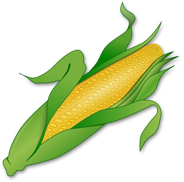 Corn clipart rn clip art vector clip art