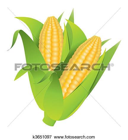 Corn Cobs-Corn cobs-18